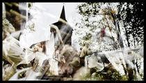 Mystical dance von Deyan Sedlarski