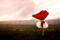 scarlet sailboat by Diana Kartasheva