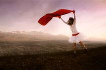 scarlet fly by Diana Kartasheva
