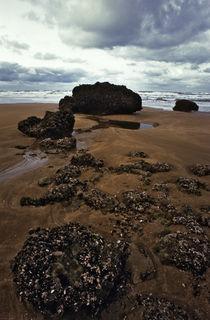 Normandy beach 14 by Razvan Anghelescu