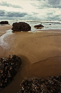 Normandy beach 12 by Razvan Anghelescu