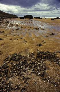 Normandy beach 6 by Razvan Anghelescu