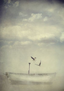 'Flight' by Sybille Sterk