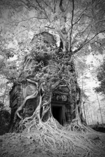 Prasat Pram or 5 Temples at Koh Ker by Mark Lucock