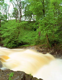 Stainforth Force by Mark Lucock
