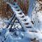 Schnee-2003-1-1