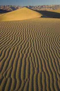 California von Danita Delimont