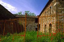 Abandoned villa in vinyard by Danita Delimont