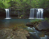 Twin Falls on Devil's Fork Richland Creek Wilderness by Danita Delimont
