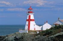 East Quoddy lighthouse von Danita Delimont