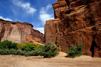 Canyon de Chelly National Monument von Danita Delimont