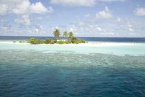 Indian Ocean by Danita Delimont