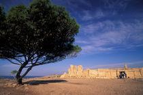 Malta Prehistoric Hagar Qim Temple von Danita Delimont