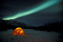 Curtains of green Northern Lights above the Brooks Range; tent in foreground by Danita Delimont