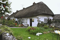 Thatched-roof cottage surrounded by garden by Danita Delimont