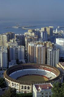 Andalucia View of Plaza de Toros (bullring) and cruise ship in harbor von Danita Delimont
