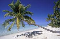 Tetiaroa French Polynesia by Danita Delimont