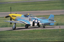 North American P-51 D Dazzling Donna on the runway von Danita Delimont