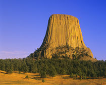 Devils Tower National Monument in Wyoming von Danita Delimont