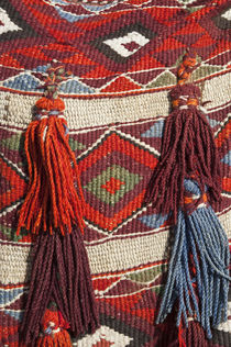 Camel blanket at the Pyramids of Giza by Danita Delimont