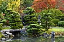 Japanese Garden by Danita Delimont