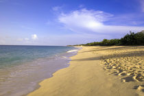 Caribbean von Danita Delimont