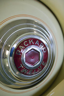 Packard Automobile Hubcap Detail by Danita Delimont