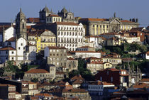 Historic houses and Cathedral in the Ribeira district by Danita Delimont