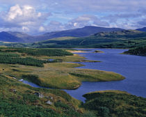 An overview of Loch Garry in the Highland of Scotland by Danita Delimont
