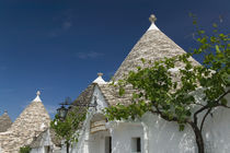 Unesco World Heritage Site Trulli House Detail von Danita Delimont