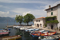 Cassone old harbor by Danita Delimont