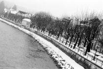 The bank of the River Salzach in winter by Danita Delimont