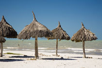 Thatch palapa made from Mexican palm leaves on the beach of the port town of Progreso on the Gulf of Mexico by Danita Delimont