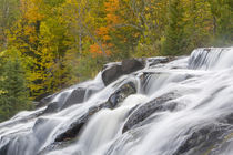 Bond Falls on the Middle Fork of the Ontonagon river near Paulding in the UP of Michigan von Danita Delimont