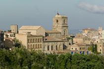 Town View from Rocca di Cerere von Danita Delimont