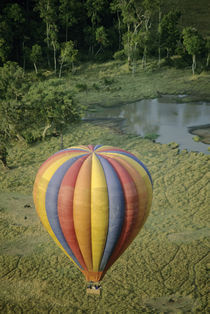 Hot-air balloon at dawn by Danita Delimont