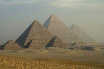 Giza Plateau Desert by Danita Delimont