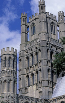 Ely Cathedral by Danita Delimont