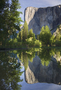 El Capitan reflected in Merced River by Danita Delimont