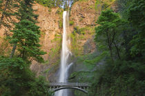 542 foot waterfall von Danita Delimont