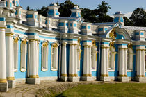 Portion of Catherine Palace by Danita Delimont