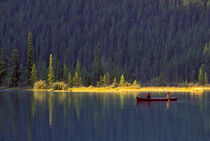 Two boys paddling canoe on Waterfowl Lake von Danita Delimont