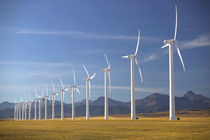 Crowsnest Pass Area: Cowley Ridge Wind Farm Landscape von Danita Delimont
