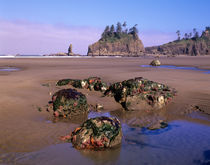 Second Beach with tidepools and seastacks by Danita Delimont