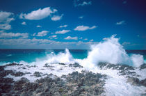 Waves in the Grand Cayman Islands von Danita Delimont