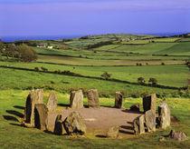 The Dromberg Stone Circle near Glandore in West Cork von Danita Delimont