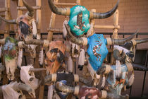 Decorative Cow Skulls / Western Motif by Danita Delimont