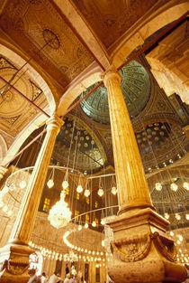 Muhammad Ali Mosque by Danita Delimont
