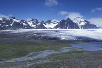 View across the Lucas Glacier to Mount Ashley from Salisbury Plain von Danita Delimont