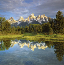 Grand Teton Mountains reflecting in the Snake River by Danita Delimont